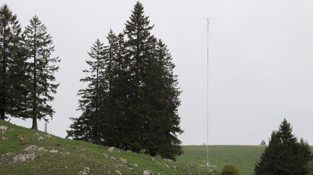 L'un des deux mâts érigés au Crêt-Meuron enregistre les ultrasons émis par les chauves-souris.