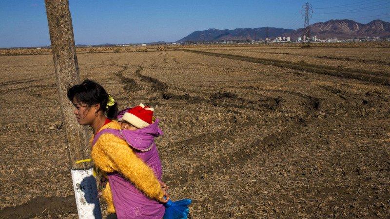 Corée du Nord: près de 20% des enfants victimes d'un retard de croissance