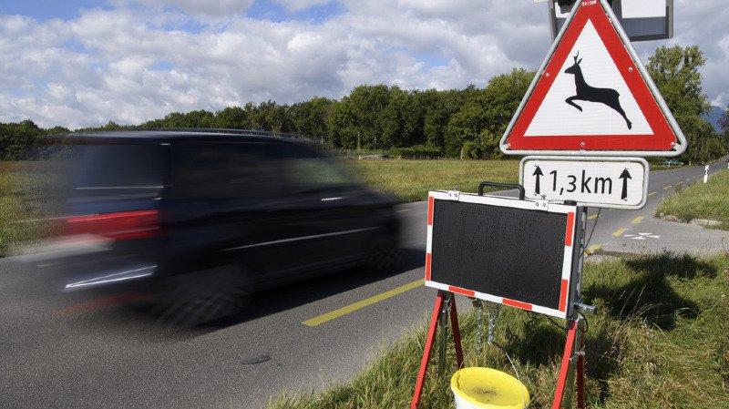 Lorsque le conducteur d'un véhicule n'est pas connu, le détenteur paie en principe l'amende. Ce n'est pas le cas pour les entreprises. (illustration)