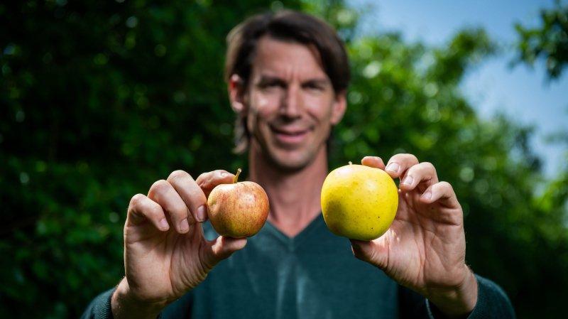 Leurs fruits et légumes sont «bio, bons et parfois moches»