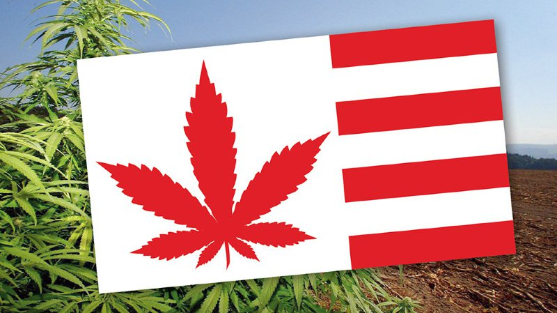 Jura: un champion local du cannabis légal