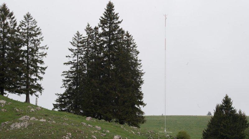 Projet éolien du Crêt-Meuron: deux mâts mesurent l'activité des chauves-souris