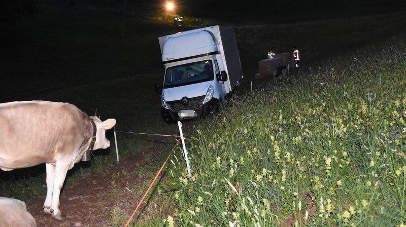 La camionnette de livraison a terminé sa course entouré de vaches.