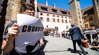 Château de Neuchâtel: des manifestants dénoncent en silence la halle d'engraissement de taureaux