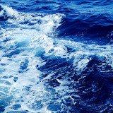 Conférence : Les bienfaits de l'eau de mer