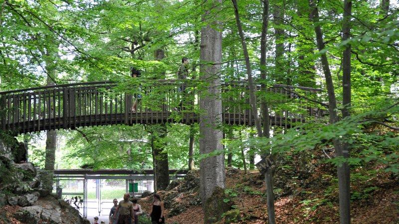 La Chaux-de-Fonds: 580 animaux recueillis par la station de soins du Bois du Petit-Château