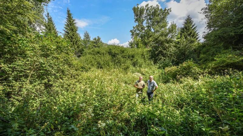 Val-de-Travers: l'étang qui allie nature et tourisme