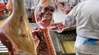 L'abattage rituel des animaux fait polémique
