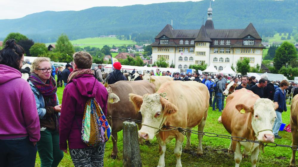 Pour l'amour des vaches et de la nature.