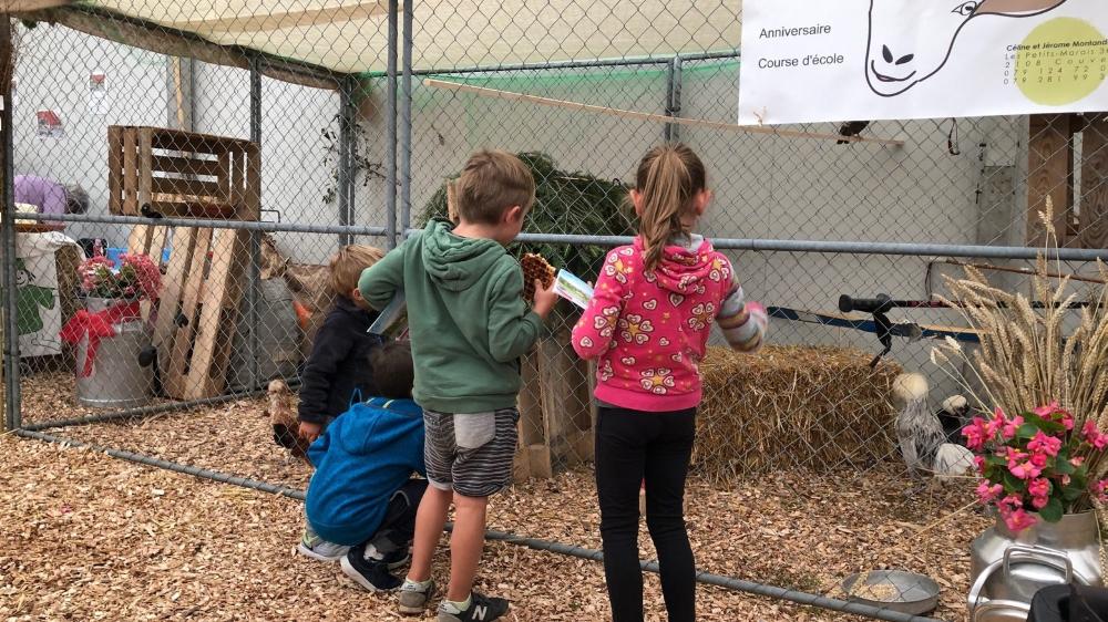Dès l'ouverture, hier à 16h, les plus jeunes se sont rués vers l'espace dédié à l'agriculture et à l'élevage.