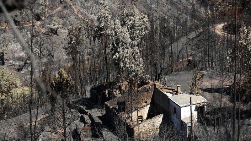 Portugal: après une semaine de lutte, les pompiers maîtrisent le gigantesque incendie de Monchique