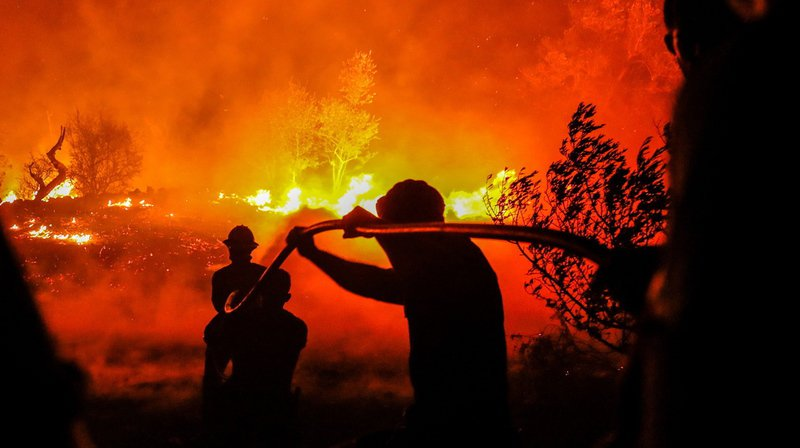 Portugal: un feu de forêt s'étend sur 100 kilomètres de périmètre