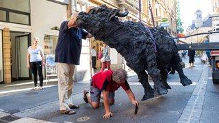 Neuchâtel: les trois bufflonnes sculptées de la rue de l'Hôpital ont été renversées dans la nuit