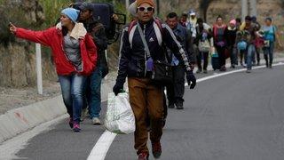 Le Brésil peine à gérer l'afflux de réfugiés