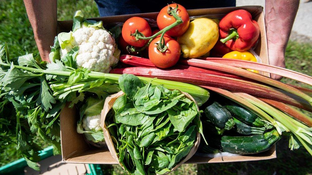 L'initiative pour les denrées alimentaires saines a réuni une majorité de votes positifs dans l'Arc jurassien.