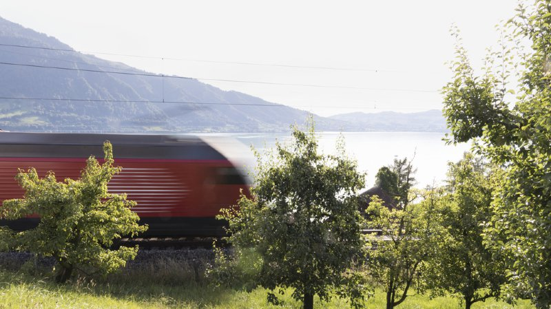 Les clôtures doivent empêcher les personnes imprudentes ou en détresse de s'approcher des tronçons où les trains circulent à 14 ou 160 km/h.