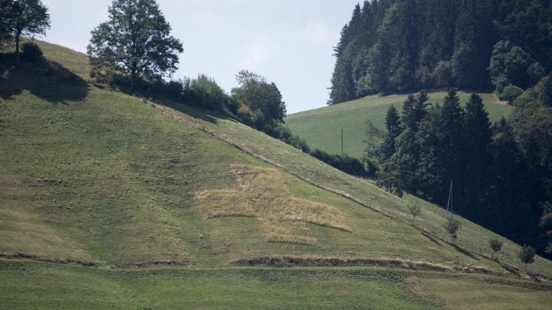 Ecologie: l'impact environnemental de la Suisse est trop élevé