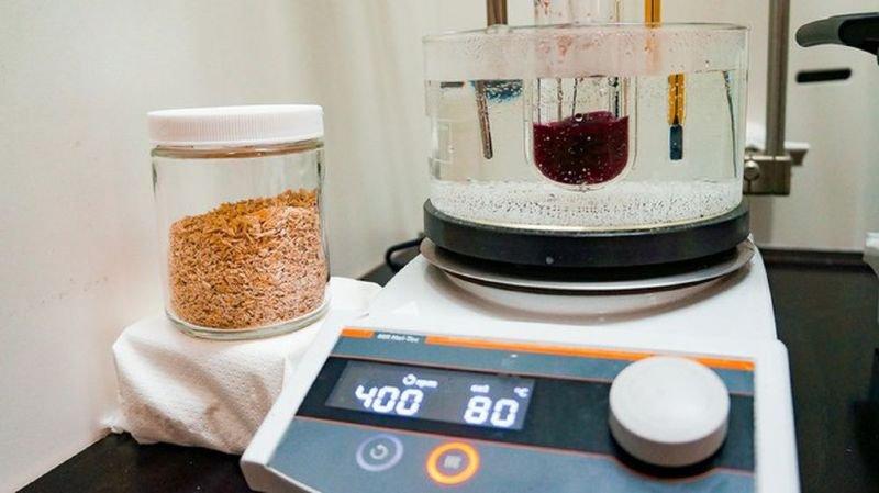 Une méthode de l'EPFL double la production de sucre végétal