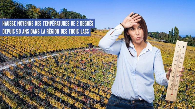 Réchauffement climatique, quel impact sur le vignoble neuchâtelois?