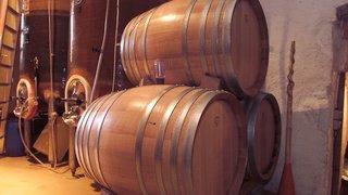 Pour assainir les caves,  il faut déclasser des vins