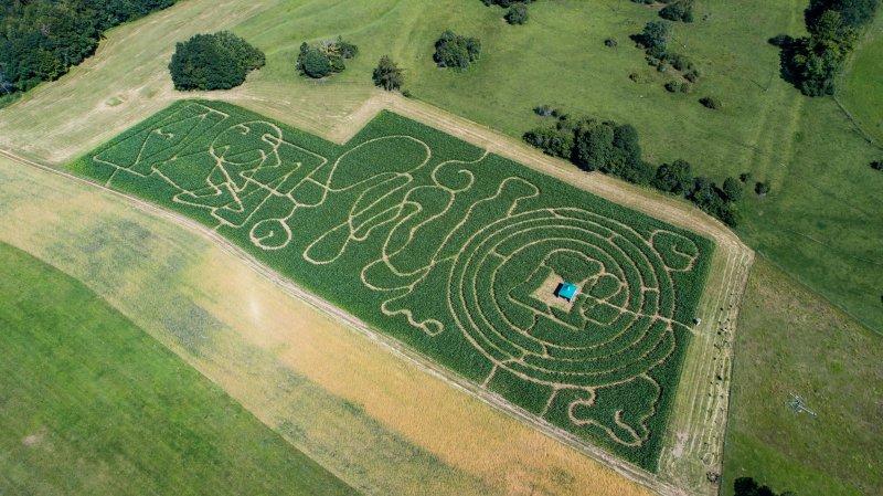 Halloween avant l'heure dans le labyrinthe de maïs géant du Landeron