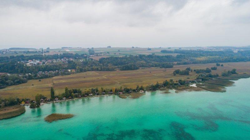 Davantage d'oiseaux d'eau hivernant sur les lacs de Neuchâtel et de Morat