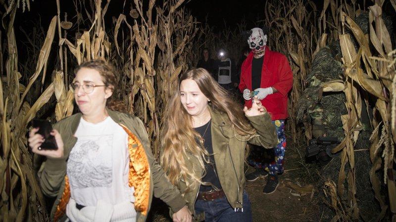 800 personnes apeurées dans le labyrinthe de maïs géant sur les hauts du Landeron