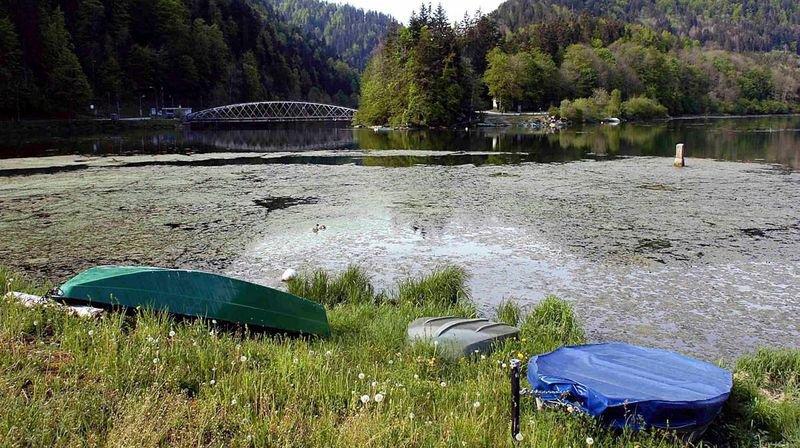 Le WWF Jura se retire du comité du Parc du Doubs
