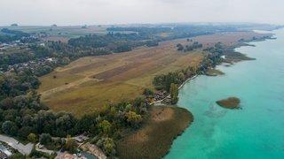 Lac de Neuchâtel: Jamy nous fait (re) découvrir la Grande Cariçaie