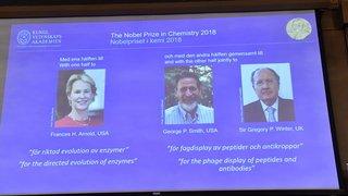 Le prix Nobel de chimie récompense des travaux sur les enzymes et les anti-corps