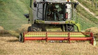 Les recettes agricoles de l'économie