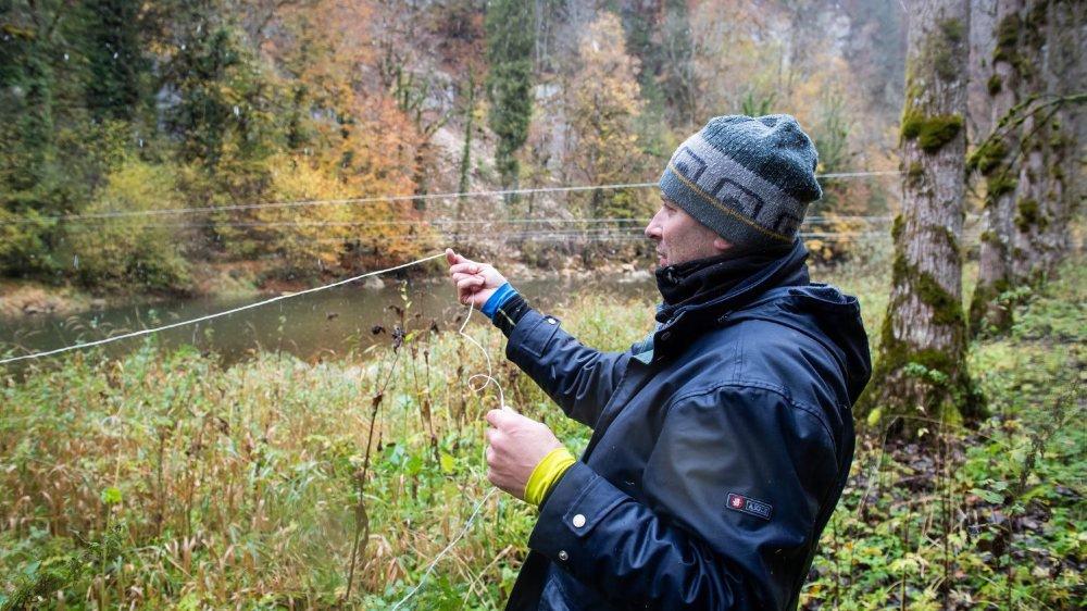 Les pêcheurs du Doubs installent des ficelles au dessus de la rivière pour empêcher les cormorans d'attaquer les poissons.