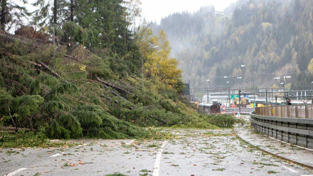 Près d'Airolo, au Tessin, plusieurs arbres sont tombés sur la route, perturbant aussi le passage des trains.