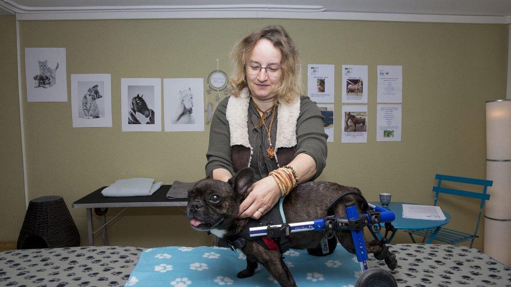 """Myriam Knecht racconte qu'elle communique avec les animaux depuis l'âge de 8 ans. Shayna, une bulldog qui se déplace avec un chariot, est """"l'une de ses ambassadrices""""."""