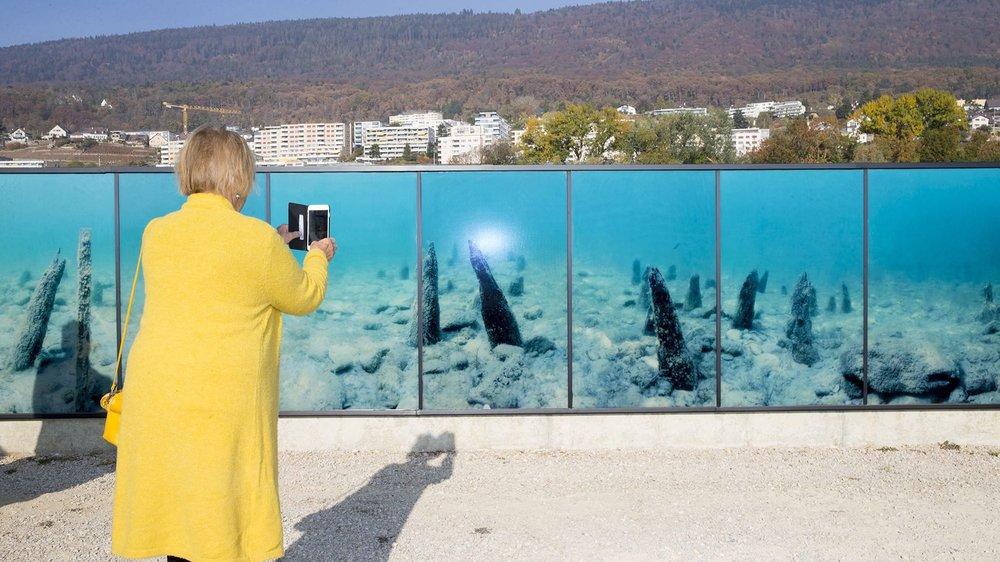 """Neuchatel, le 23 octobre 2018, inauguration au Latenium de """"Emersion"""", une fresque photographique réalisée par Compaz, figurant les fonds lacustres d'un site palafittique sur des panneaux solaires. © Muriel Antille"""