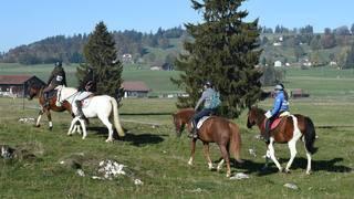 L'Equi Trail des Franches-Montagnes attire plus de 500 cavaliers