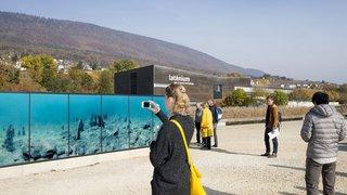 Au Laténium, une installation photovoltaïque révèle la beauté des vestiges lacustres