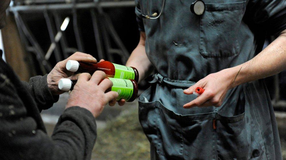 Le vétérinaire mis en cause certifie n'avoir livré des médicaments à des éleveurs que dans les cantons de Vaud et Fribourg.