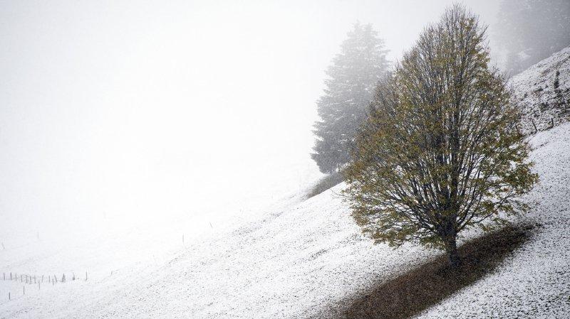 Un fin manteau neigeux va recouvrir la Suisse romande ce lundi
