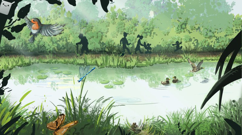 Ce dessin, fourni par les porteurs du projet d'étang de la Presta, illustre le biotope en passe d'être créé.