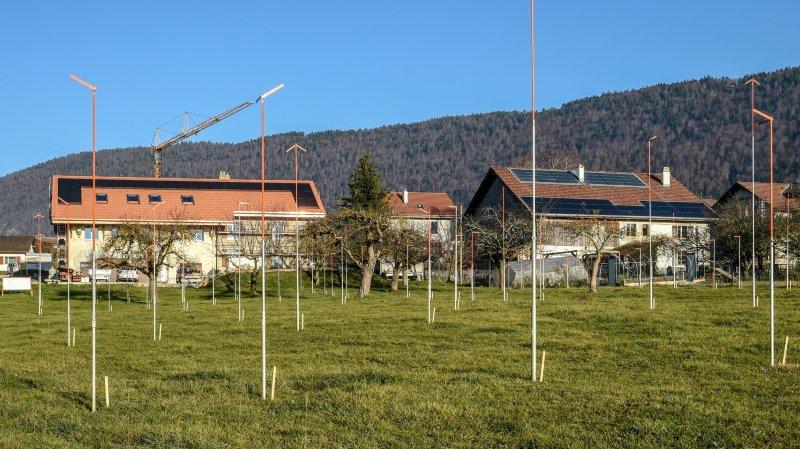 Dix pavillons pour séniors en projet à Savagnier