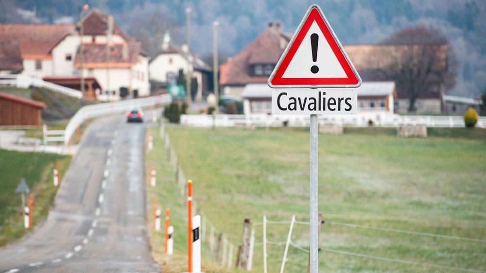 Le cheval renversé par un jeune automobiliste, le dimanche matin 25 novembre, était en retraite au centre équestre Le Maley, sur les hauteurs de Saint-Blaise.