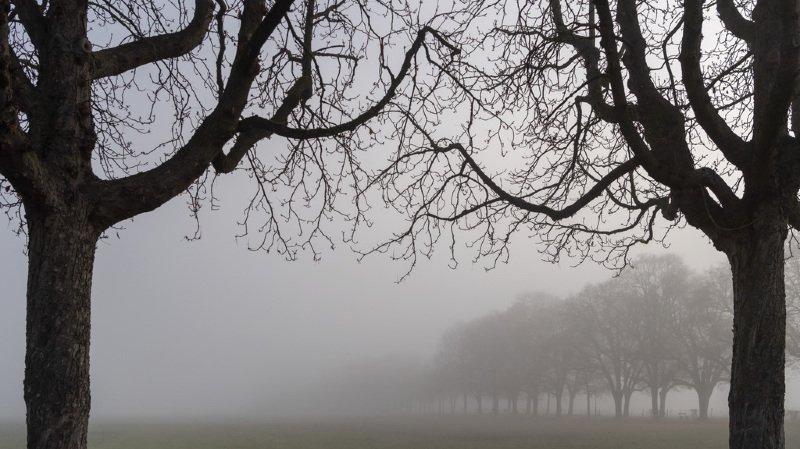 Météo: le mois de décembre a été venteux, pluvieux et peu neigeux