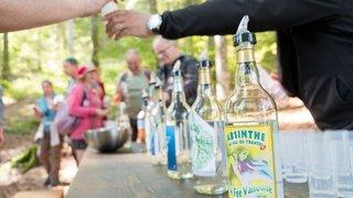 Victoire d'étape pour l'Indication géographique protégée de l'absinthe
