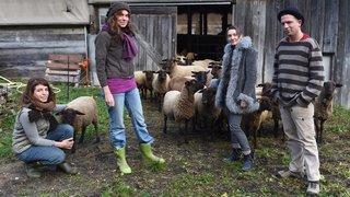 Longo Maï, une communauté jurassienne en laine qui pique