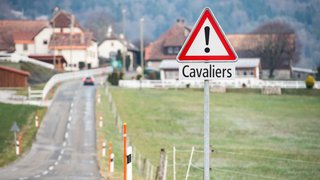 Pour les chevaux, merci de ralentir: les cavaliers lancent un appel après l'accident de Saint-Blaise
