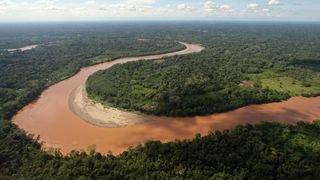 Pour la préserver, faut-il donner des droits à la nature?