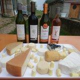 Dégustations vins et fromages de chèvre