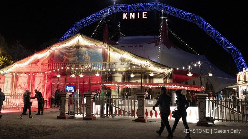 Cirque: le crowdfunding lancé par la famille Knie pour acheter un nouveau chapiteau récolte plus de 250'000 francs