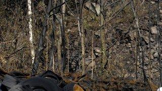 Pneus abandonnés dans le Jura bernois: les vilains dessous d'une filière africaine